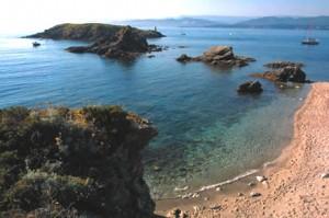 visite de l'ile des embiez avec la classe de mer