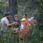 la découverte de la gestion de la forêt avec votre classe