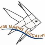 La plage de Magaud devient une aire marine éducative